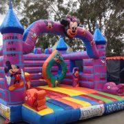 Disney Castle 2