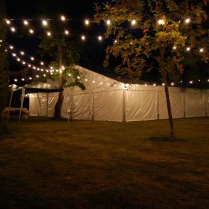 Festoon Lights 1