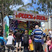 Pluck a Duck 2