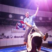 Rodeo Bull