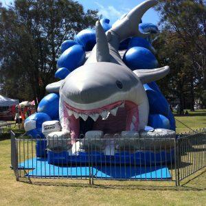 Shark Slide 1